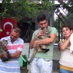 Sokak hayvanları için evinin bahçesinden site yönetimine ilginç bir yolla seslendi
